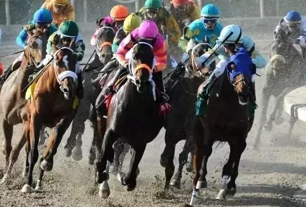 Horseracing Betting